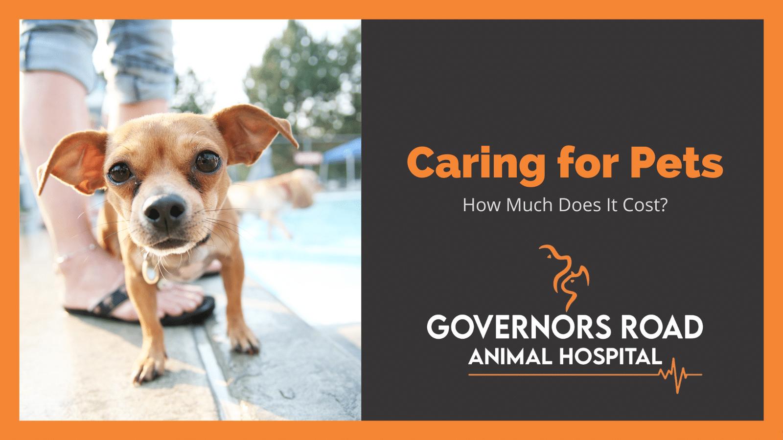 pet care costs in ontario